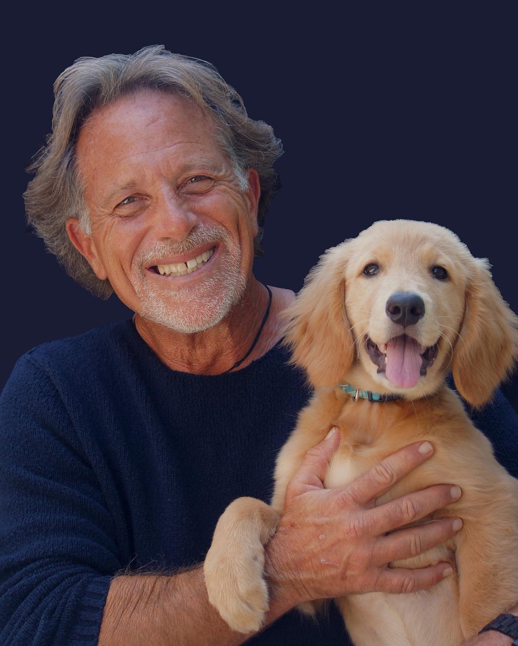 portrait, dog, pet
